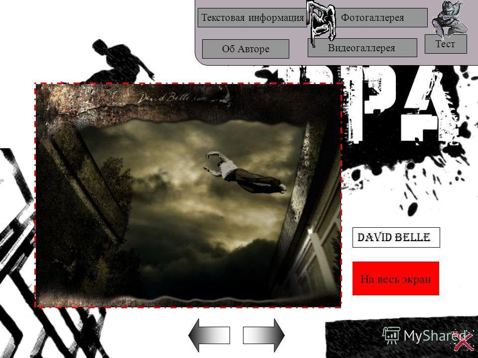 На весь экран Текстовая информацияФотогаллерея Об Авторе Видеогаллерея Тест David Belle