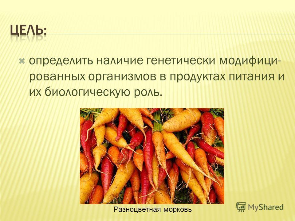 определить наличие генетически модифици- рованных организмов в продуктах питания и их биологическую роль. Разноцветная морковь