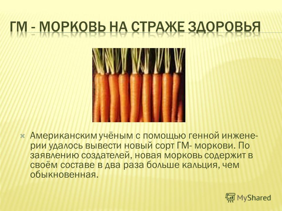 Американским учёным с помощью генной инжене- рии удалось вывести новый сорт ГМ- моркови. По заявлению создателей, новая морковь содержит в своём составе в два раза больше кальция, чем обыкновенная.