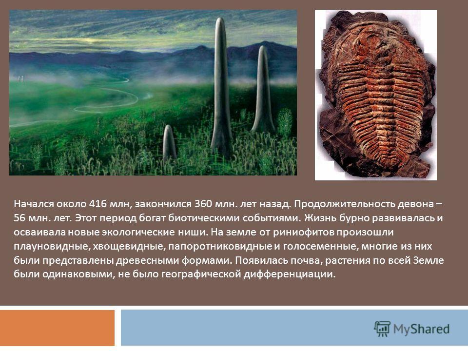 Начался около 416 млн, закончился 360 млн. лет назад. Продолжительность девона – 56 млн. лет. Этот период богат биотическими событиями. Жизнь бурно развивалась и осваивала новые экологические ниши. На земле от риниофитов произошли плауновидные, хвоще