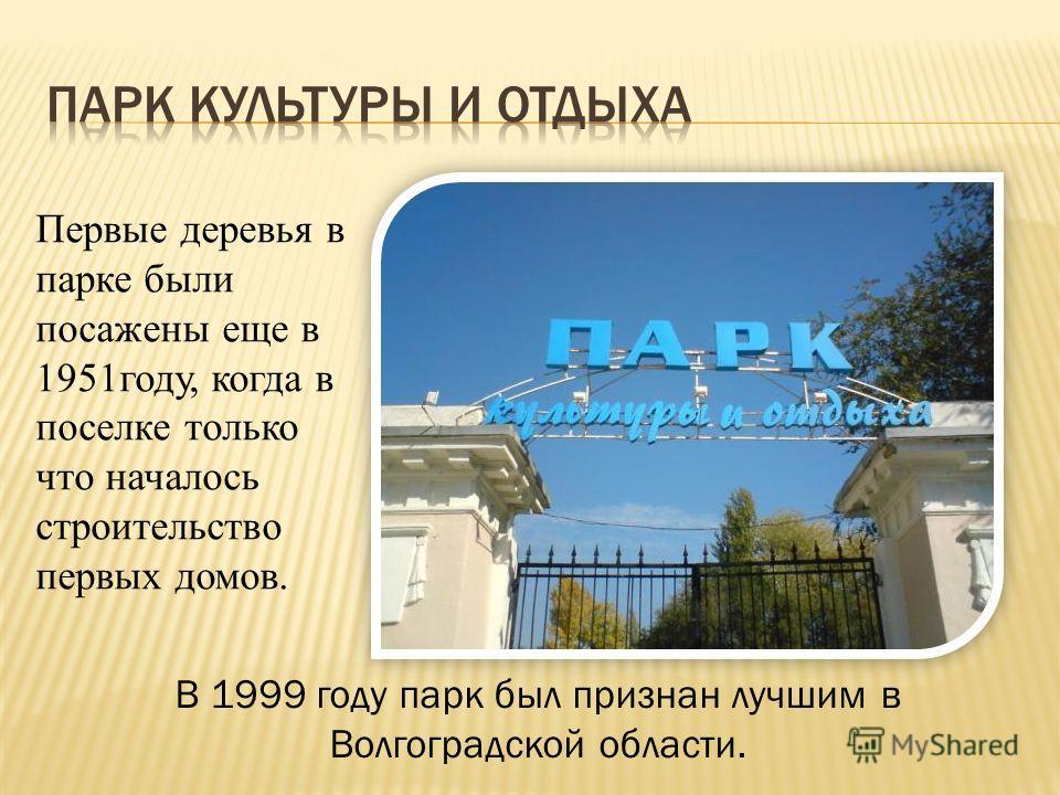 Первые деревья в парке были посажены еще в 1951году, когда в поселке только что началось строительство первых домов. В 1999 году парк был признан лучшим в Волгоградской области.