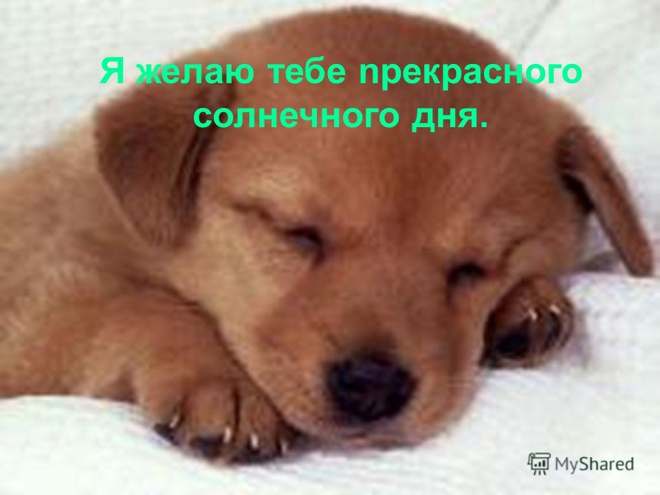 Ты поймёшь, что небо открывается для тех, кто верит в лучшее будущее и хочет бороться за жизнь… Иди за Мечтами !!!