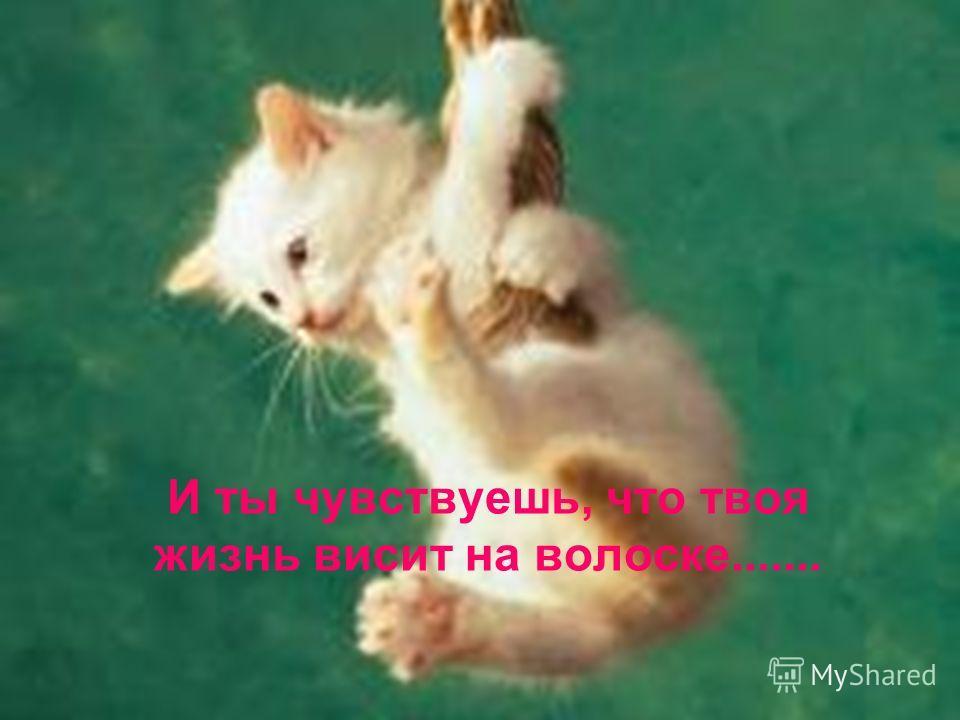Если у тебя так много проблем, которые давят на голову......