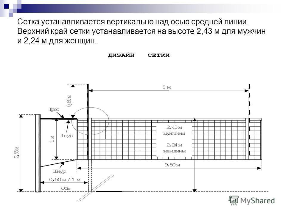 Сетка устанавливается вертикально над осью средней линии. Верхний край сетки устанавливается на высоте 2,43 м для мужчин и 2,24 м для женщин.
