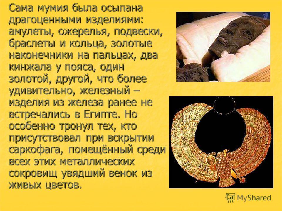 Сама мумия была осыпана драгоценными изделиями: амулеты, ожерелья, подвески, браслеты и кольца, золотые наконечники на пальцах, два кинжала у пояса, один золотой, другой, что более удивительно, железный – изделия из железа ранее не встречались в Егип
