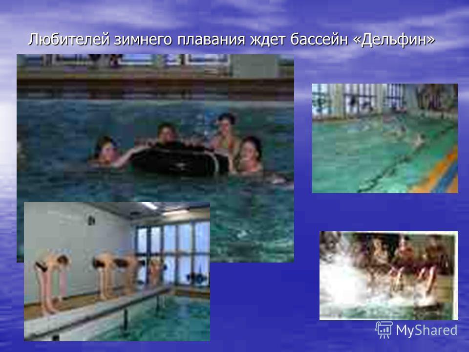 Любителей зимнего плавания ждет бассейн «Дельфин»