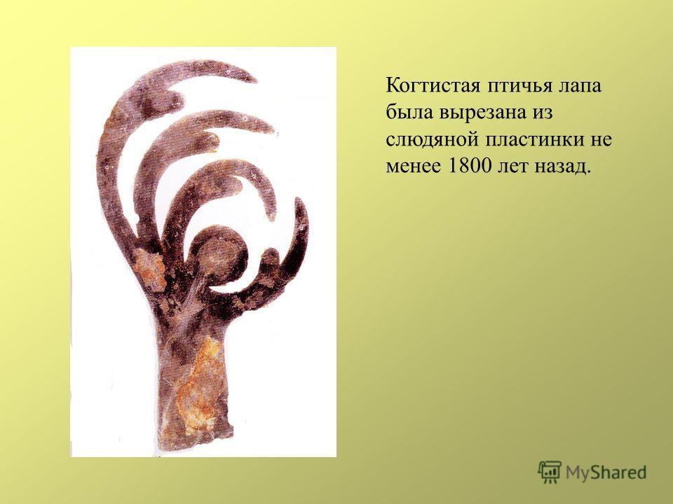 Когтистая птичья лапа была вырезана из слюдяной пластинки не менее 1800 лет назад.