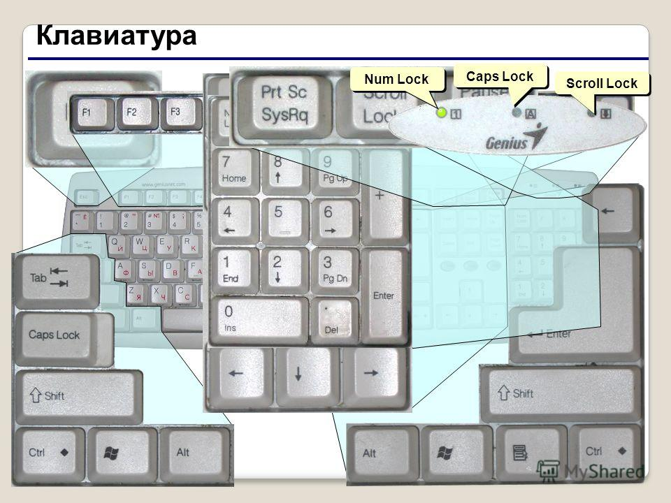 3 Клавиатура Scroll Lock Caps Lock Num Lock