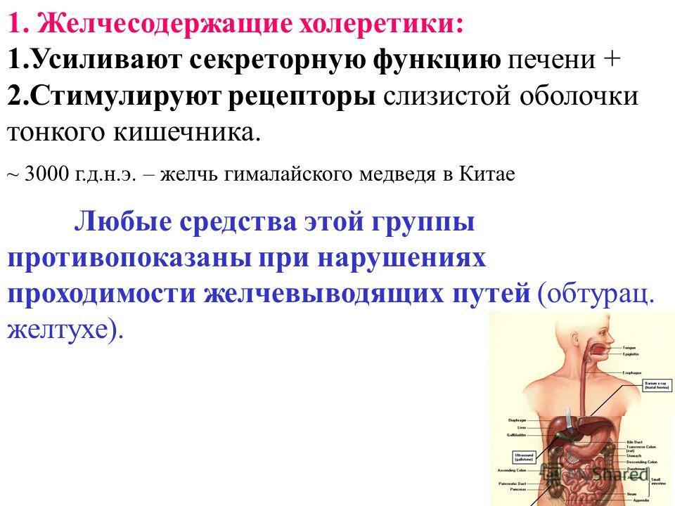 1. Желчесодержащие холеретики: 1.Усиливают секреторную функцию печени + 2.Стимулируют рецепторы слизистой оболочки тонкого кишечника. ~ 3000 г.д.н.э. – желчь гималайского медведя в Китае Любые средства этой группы противопоказаны при нарушениях прохо