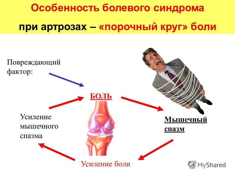 Особенность болевого синдрома при артрозах – «порочный круг» боли Повреждающий фактор: БОЛЬ Усиление мышечного спазма Мышечный спазм Усиление боли