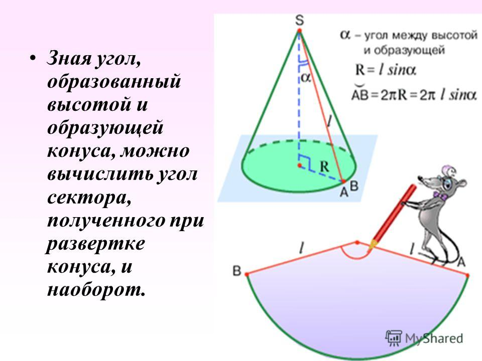 Зная угол, образованный высотой и образующей конуса, можно вычислить угол сектора, полученного при развертке конуса, и наоборот.