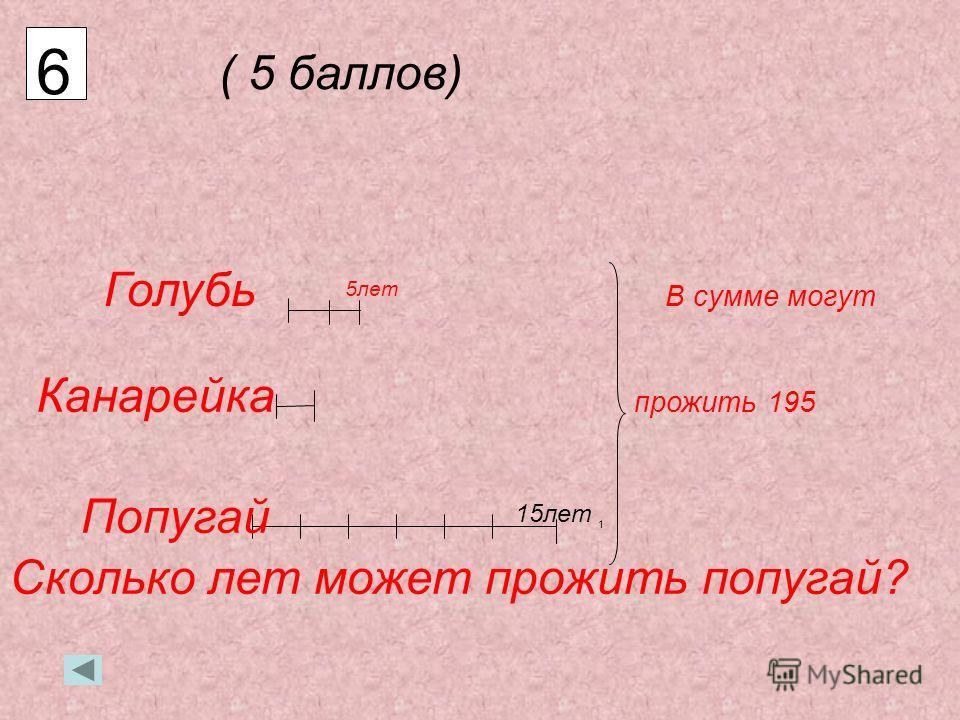 5 (10 баллов) о з о р н и к з о р н и к о р н и к р н и к н и к и к к 5 5 5 3 3 2 1