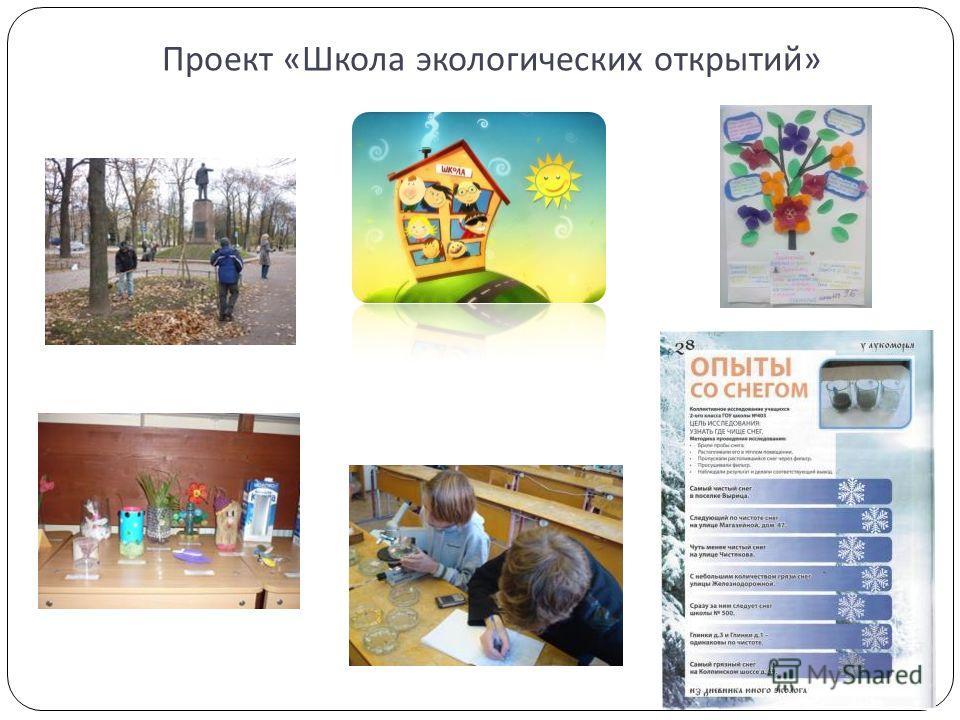 Проект « Школа экологических открытий »