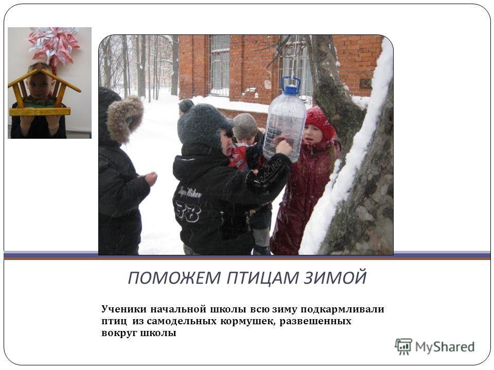 ПОМОЖЕМ ПТИЦАМ ЗИМОЙ Ученики начальной школы всю зиму подкармливали птиц из самодельных кормушек, развешенных вокруг школы