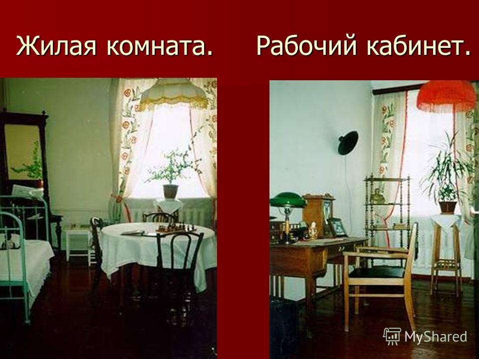 Жилая комната. Рабочий кабинет.