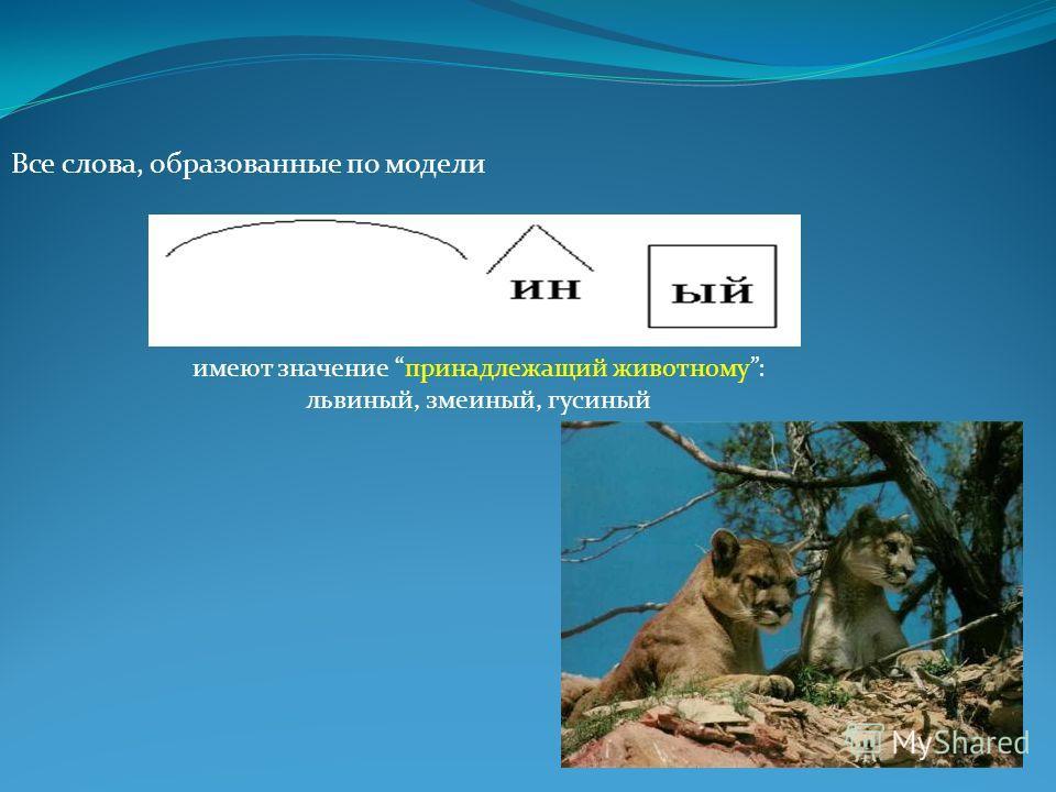 Все слова, образованные по модели имеют значение принадлежащий животному: львиный, змеиный, гусиный