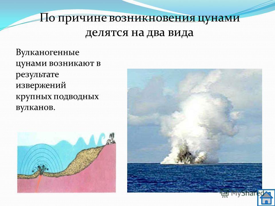 Вулканогенные цунами возникают в результате извержений крупных подводных вулканов. Виды и причины возникновения цунами По причине возникновения цунами делятся на два вида
