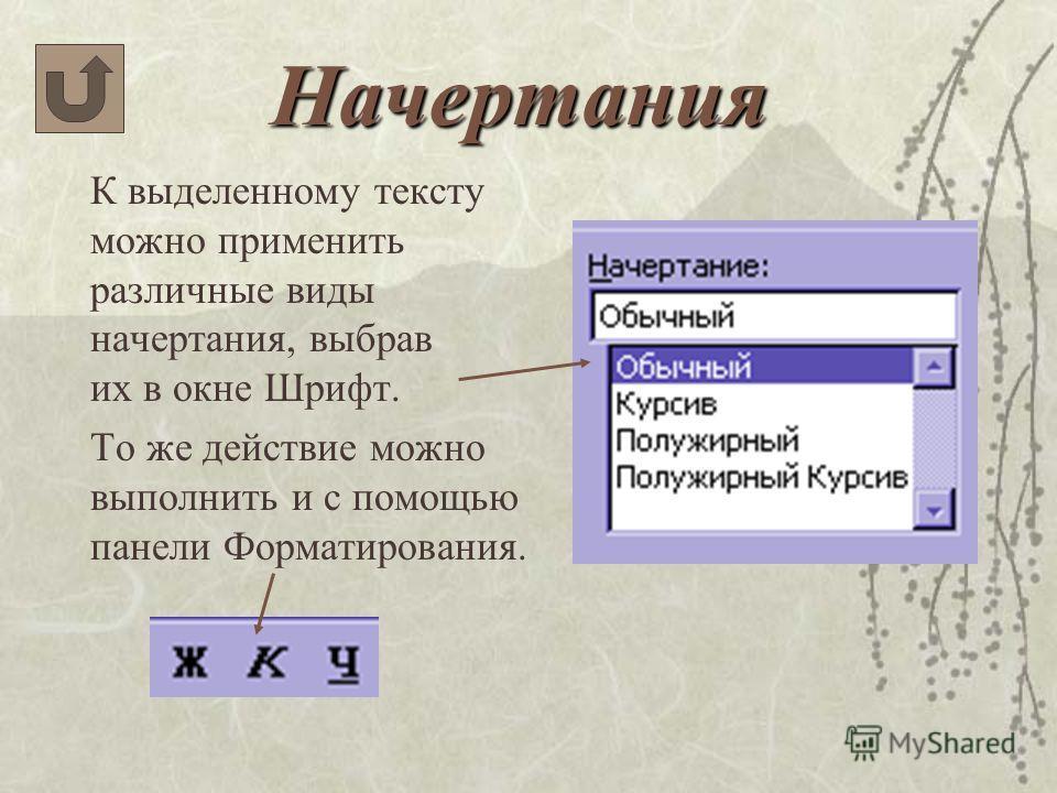 Начертания К выделенному тексту можно применить различные виды начертания, выбрав их в окне Шрифт. То же действие можно выполнить и с помощью панели Форматирования.