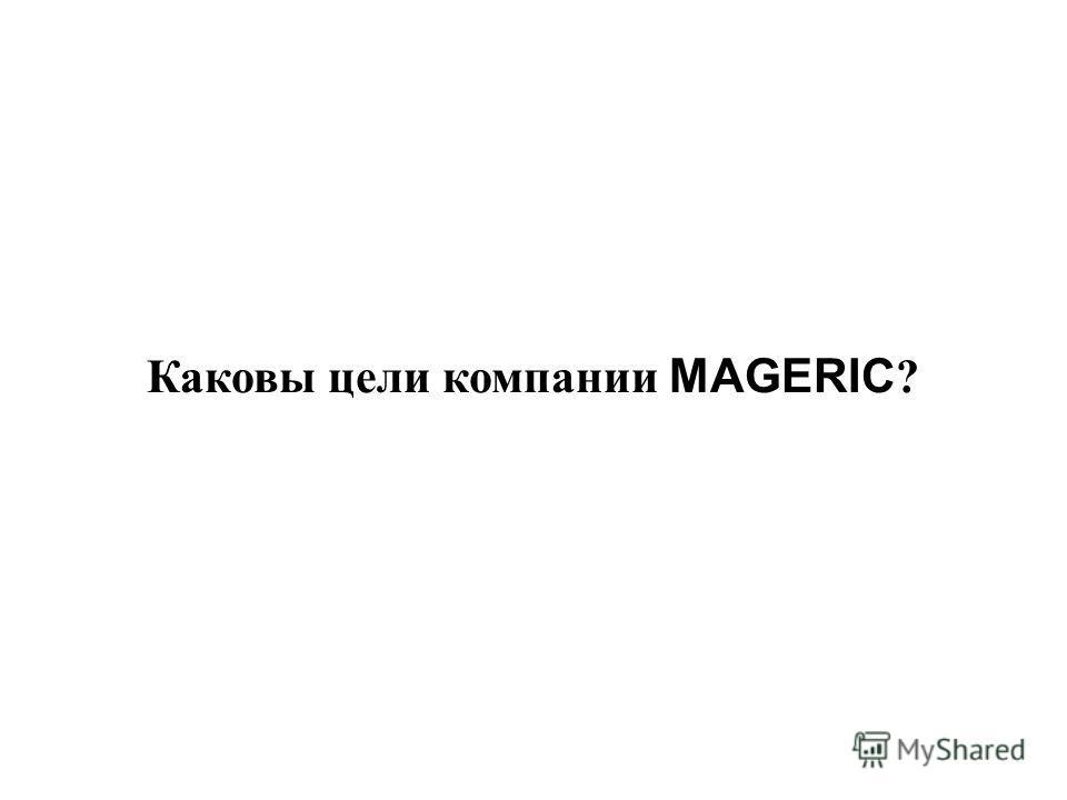 Каковы цели компании MAGERIC ?