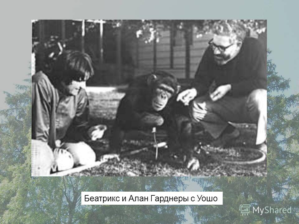 Беатрикс и Алан Гарднеры с Уошо