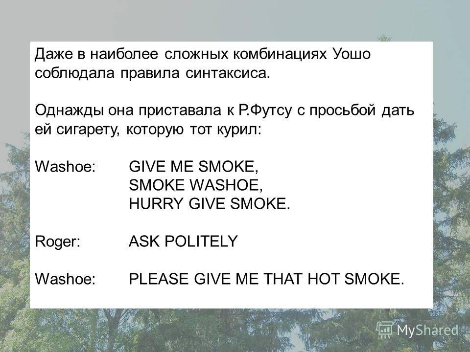 Даже в наиболее сложных комбинациях Уошо соблюдала правила синтаксиса. Однажды она приставала к Р.Футсу с просьбой дать ей сигарету, которую тот курил: Washoe: GIVE ME SMOKE, SMOKE WASHOE, HURRY GIVE SMOKE. Roger: ASK POLITELY Washoe:PLEASE GIVE ME Т
