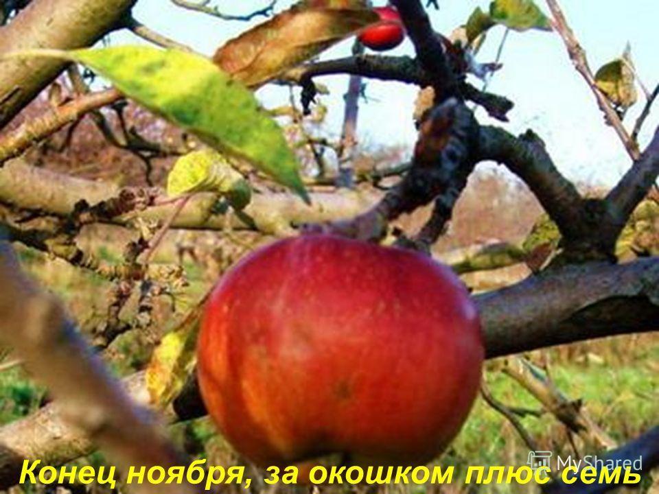 - автор стихов Евгений Меркулов