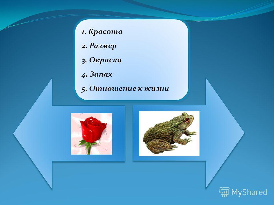 1. Красота 2. Размер 3. Окраска 4. Запах 5. Отношение к жизни 1. Красота 2. Размер 3. Окраска 4. Запах 5. Отношение к жизни