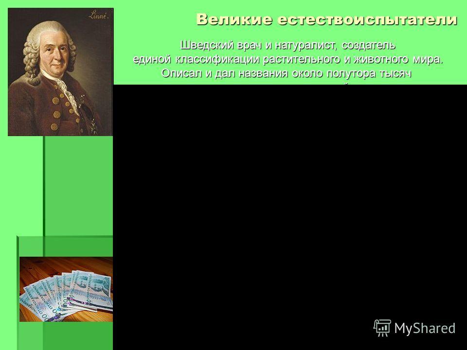Карл Линней 1708-1778 Великие естествоиспытатели Шведский врач и натуралист, создатель единой классификации растительного и животного мира. Описал и дал названия около полутора тысяч новых видов растений и большое число видов животных. и большое числ