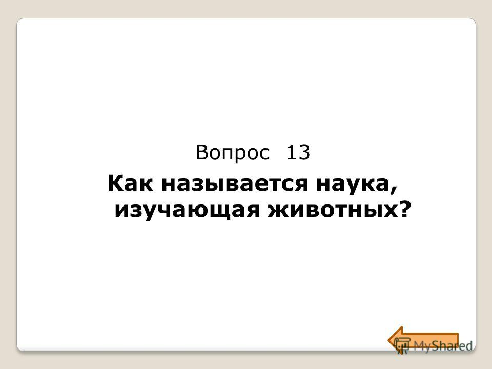 Вопрос 13 Как называется наука, изучающая животных?