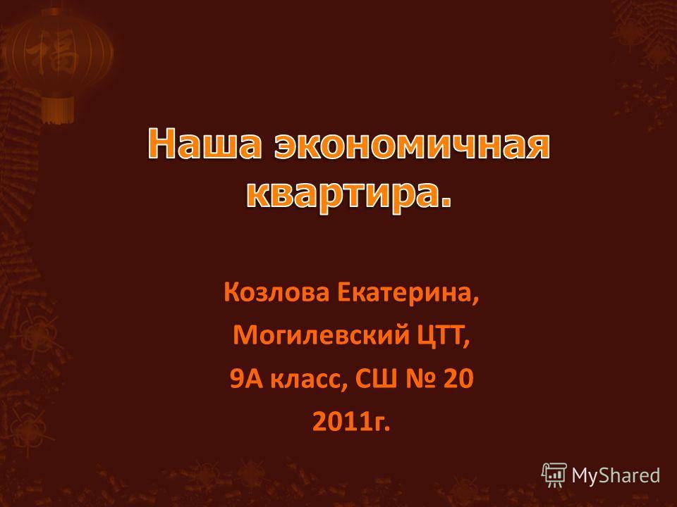 Козлова Екатерина, Могилевский ЦТТ, 9А класс, СШ 20 2011г.