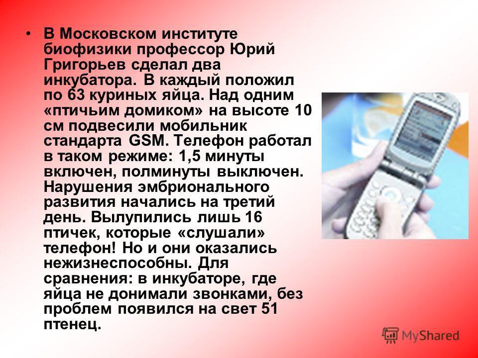 В Московском институте биофизики профессор Юрий Григорьев сделал два инкубатора. В каждый положил по 63 куриных яйца. Над одним «птичьим домиком» на высоте 10 см подвесили мобильник стандарта GSM. Телефон работал в таком режиме: 1,5 минуты включен, п