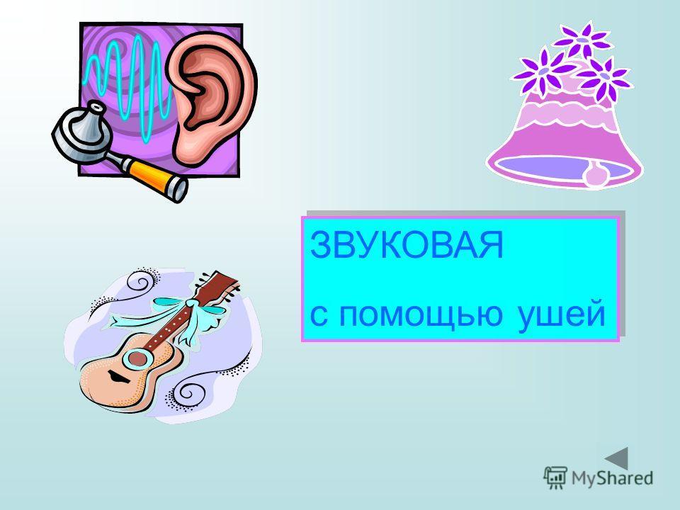 ЗВУКОВАЯ с помощью ушей ЗВУКОВАЯ с помощью ушей