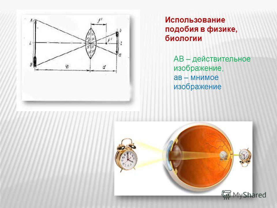 Использование подобия в физике, биологии АВ – действительное изображение, ав – мнимое изображение