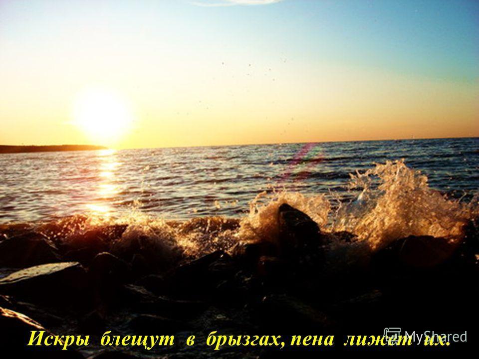 И в волнах купаясь, на ветру дрожит.