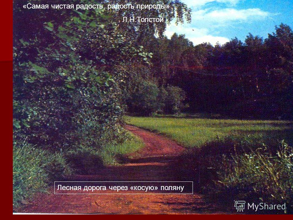 Лесная дорога через «косую» поляну «Самая чистая радость, радость природы» Л.Н.Толстой