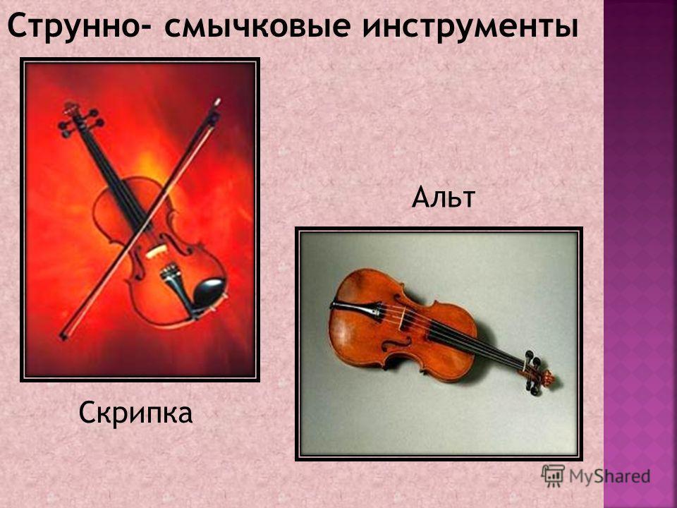 Струнно- смычковые инструменты Скрипка Альт