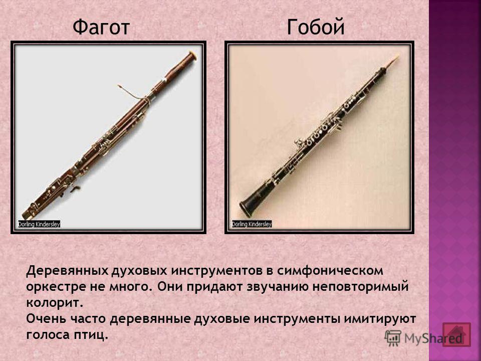ФаготГобой Деревянных духовых инструментов в симфоническом оркестре не много. Они придают звучанию неповторимый колорит. Очень часто деревянные духовые инструменты имитируют голоса птиц.