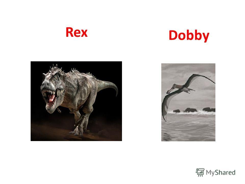 Rex Dobby