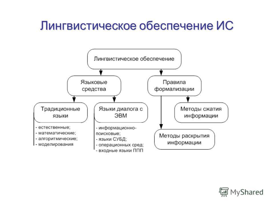 Лингвистическое обеспечение ИС