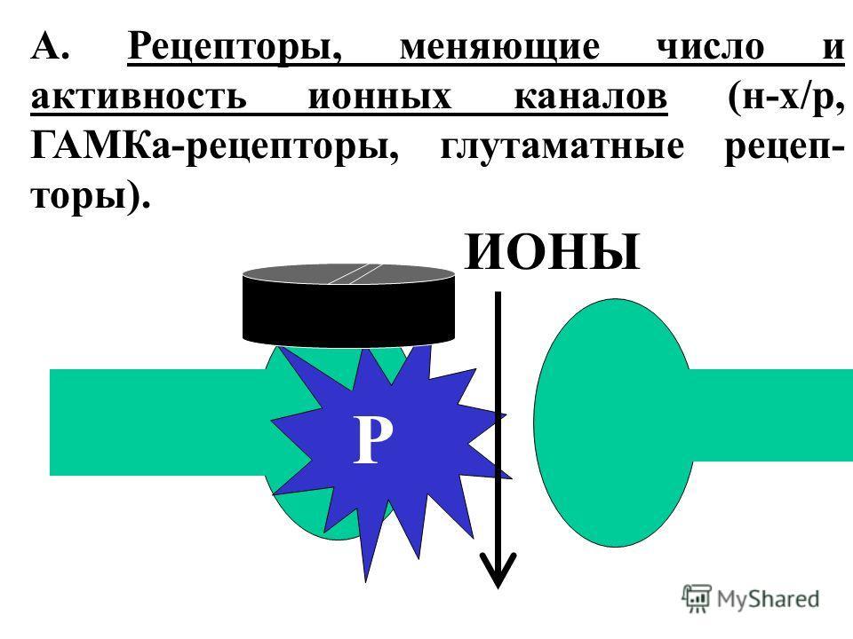 А. Рецепторы, меняющие число и активность ионных каналов (н-х/р, ГАМКа-рецепторы, глутаматные рецеп- торы). Р ИОНЫ