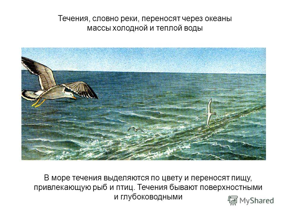 Течения, словно реки, переносят через океаны массы холодной и теплой воды В море течения выделяются по цвету и переносят пищу, привлекающую рыб и птиц. Течения бывают поверхностными и глубоководными