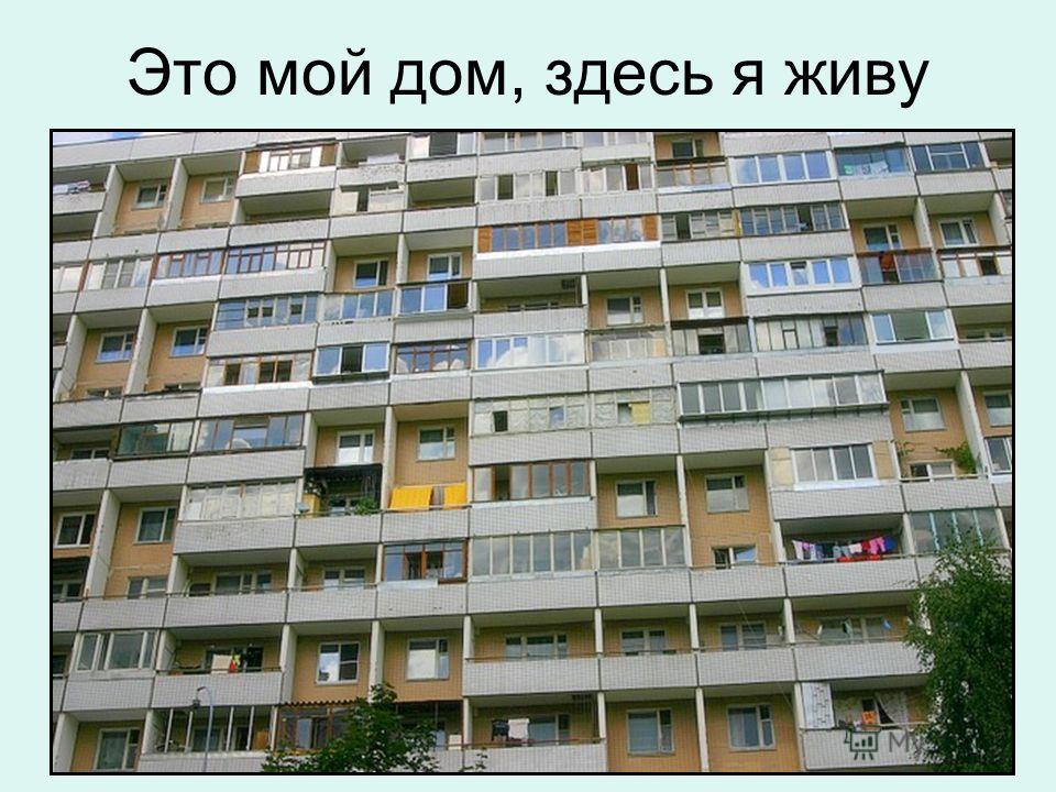 МОЙ ДВОР