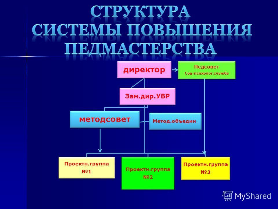 директор Проектн.группа 1 Проектн.группа 2 Проектн.группа 3 Зам.дир.УВР методсовет Метод.объедин. Педсовет Соц-психолог.служба