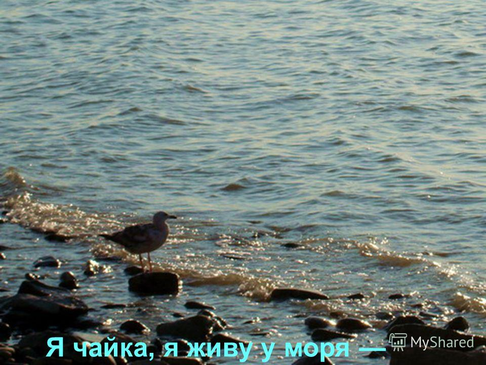 Автор стихов Катя Крюкова