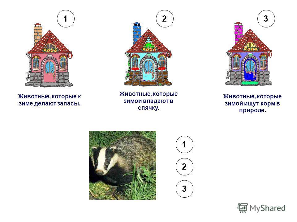 Животные, которые к зиме делают запасы. Животные, которые зимой впадают в спячку. Животные, которые зимой ищут корм в природе. 123 1 2 3