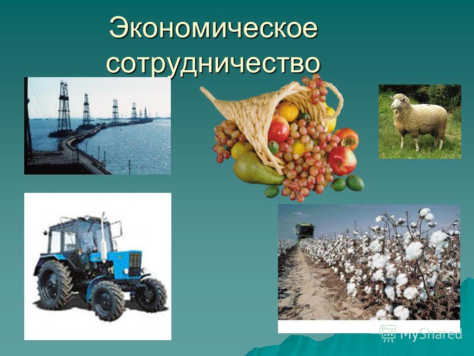 Экономическое сотрудничество