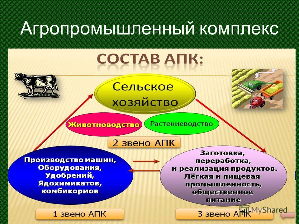 Агропромышленный комплекс Отрасли промышленности: перерабатывающие, создающие средства производства транспорт торговля Земледелие Животноводство