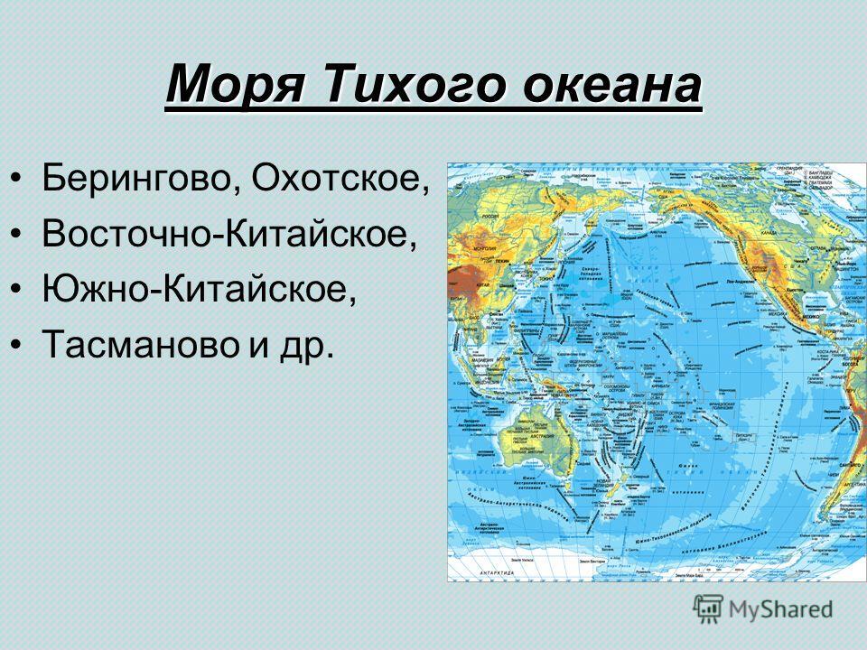 Моря Тихого океана Берингово, Охотское, Восточно-Китайское, Южно-Китайское, Тасманово и др.