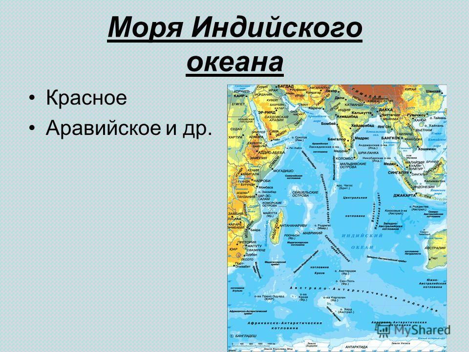 Моря Индийского океана Красное Аравийское и др.