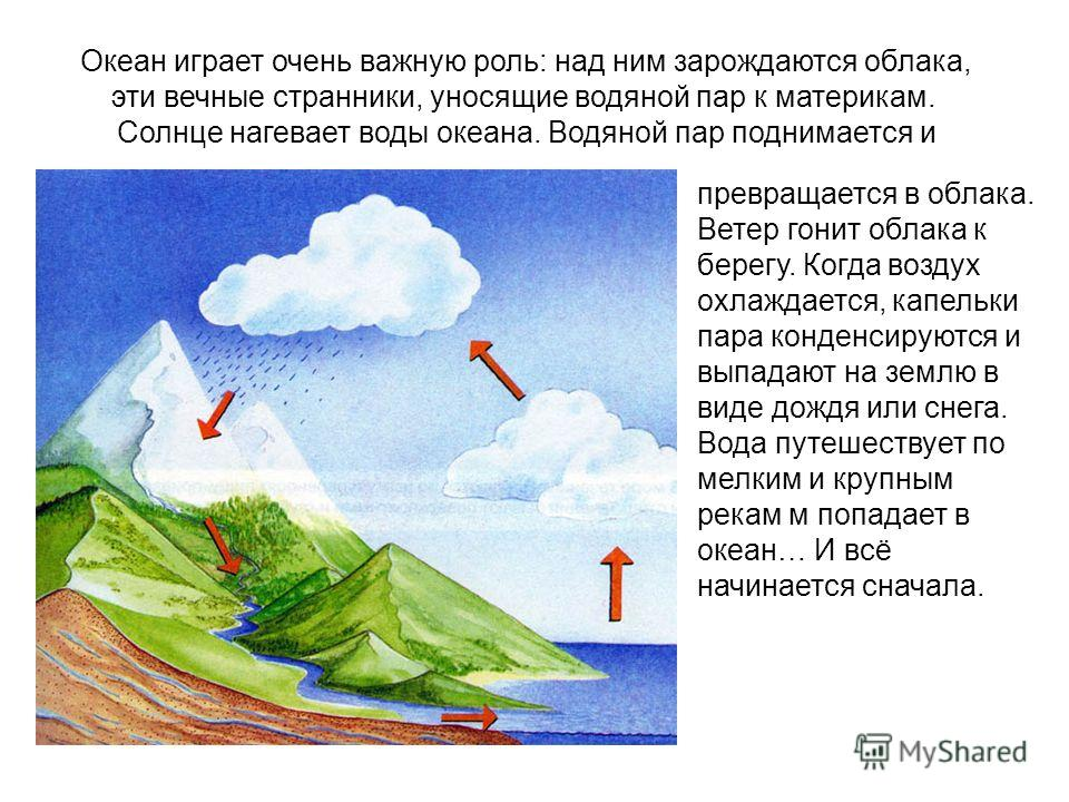 Океан играет очень важную роль: над ним зарождаются облака, эти вечные странники, уносящие водяной пар к материкам. Солнце нагевает воды океана. Водяной пар поднимается и превращается в облака. Ветер гонит облака к берегу. Когда воздух охлаждается, к